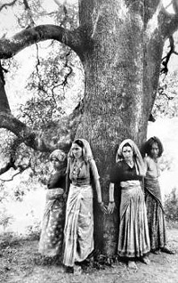 Chipko women
